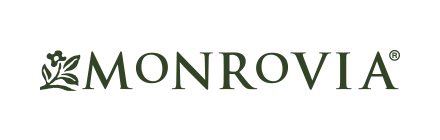 About – Client – 04 – Monrovia